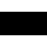 ANGELS NEVER DIE logo
