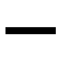 VANESSA BRUNO logo